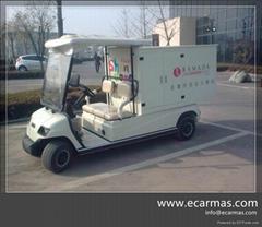China ECARMAS electric h