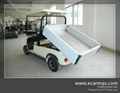 China ECARMAS Electric cargo cart