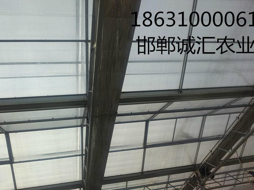 智能阳光板温室大棚 1