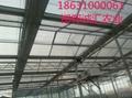 智能阳光板温室大棚 4