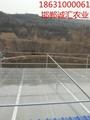 智能阳光板温室大棚 5