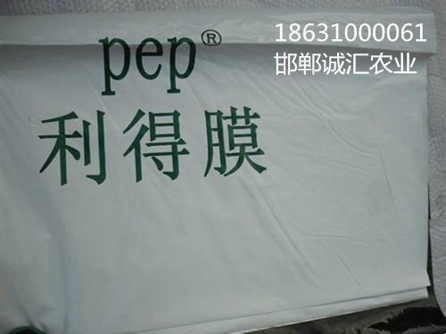 pep利德膜po膜 2