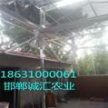 阳光板温室大棚厂家直销 2