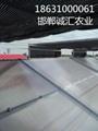阳光板温室大棚厂家直销 4