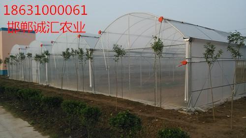 薄膜大棚放風卷膜器廠家批發 4
