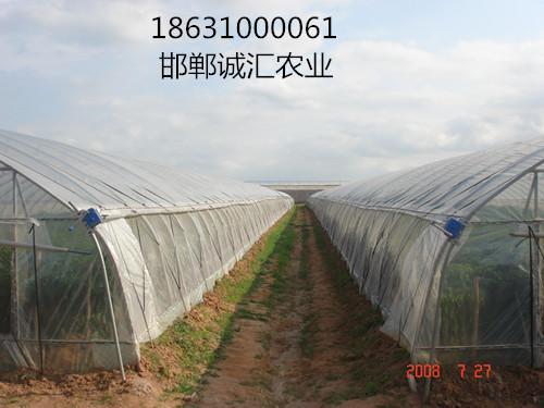 蔬菜大棚薄膜 1
