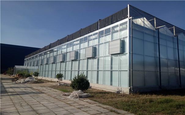 玻璃溫室 1