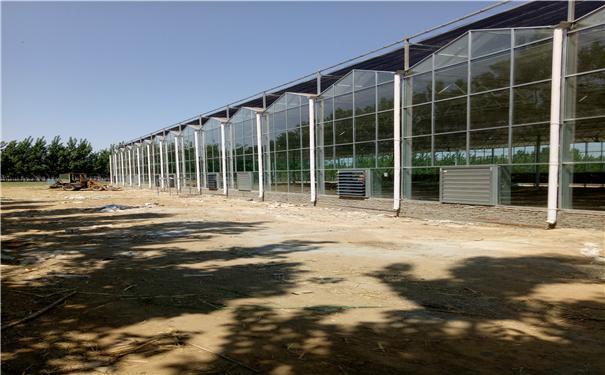 玻璃溫室 2
