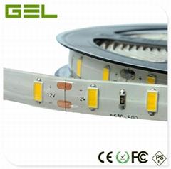 IP65 Glue Waterproof LED SMD5630 Flexible Strip Light 300LED DC12/24V 1x5Meter