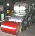 Purchasing 914mm Prepainted Hot Dipped Galvanized Steel Sheet in Coil