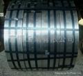长期求购热镀锌带钢