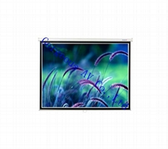 Manual Wall Screen,projection screen for home theater
