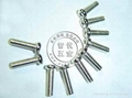 Philips Pan Head Screws 5