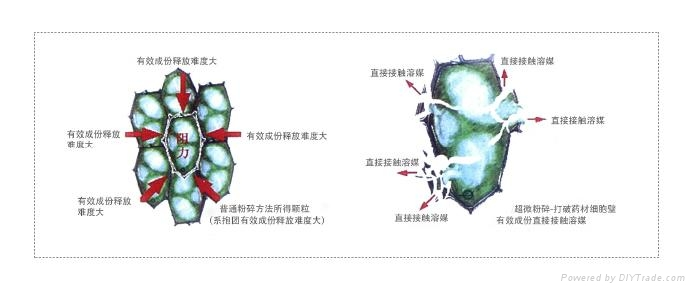 廠家直銷CWM-100C大型中藥材超細粉碎機 2