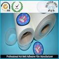 hot melt adhesive film 2