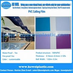Soft Membrane PVC Ceiling Film