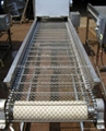 Conveyor belt mesh 2