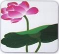 瓷砖平板打印机 3