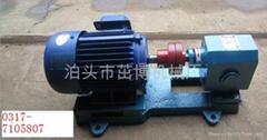 拌合站燃烧器专用增压燃油泵