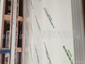 南亚PVC象牙板 3
