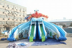 2015 Popular inflatables commercial water slide on sale !!!