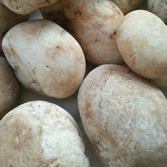 白色鵝卵石