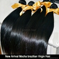 5A Grade tangle free straight hair