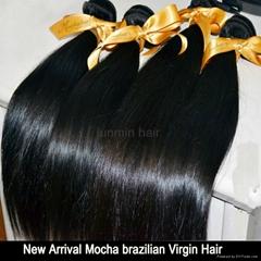 5A Grade tangle free straight hair brazilian virgin hair