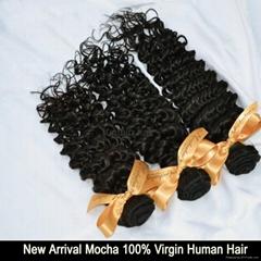 5A Grade  brazilian curly hair