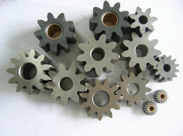 Oil Pump Rotor and Gear 4