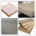 18mm phenolic plywood