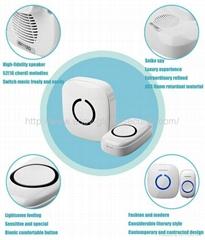 Wireless Doorbell Wireless Alarm Product