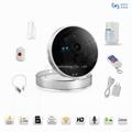 IP Camera Alarm Kit