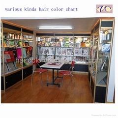 Hair Color Cream Guide Book