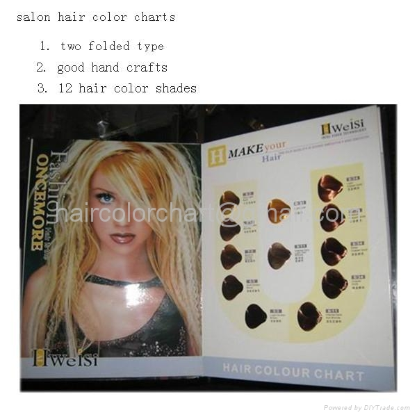Hair Color Catalogue produce 1