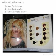 Hair Color Catalogue produce