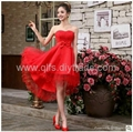 Free Shipping 2013 Autumn Winter Lace Mid-Calf Sleeveless Appliques Ladies' Dres 1