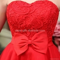 Free Shipping 2013 Autumn Winter Lace Mid-Calf Sleeveless Appliques Ladies' Dres 4