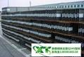 河南高频焊接H型钢