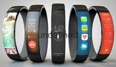 2016 China (Beijing) International Smart Health & Wearable Devices Expo