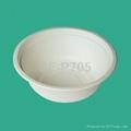 20 oz/570ml bagasse Bowl