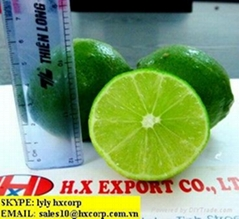 OFFER LIME.pls contact me via SKYPE: smithnguyen1