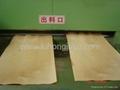 供應實木層壓床板 4