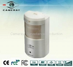 CCTV Camera-WDR 700tvl Low Lux IR Hidden CCD Camera