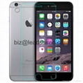 Newest Tempered Glass Screen Protector for iPhone6 plus 5