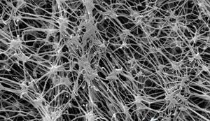 ePTFE微孔膜 4