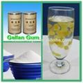 Low Acyl Gellan Gum Suspending Agent for