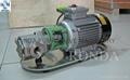 WCB 便携式铸铁/不锈钢电动齿轮油泵 4