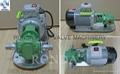 WCB 便携式铸铁/不锈钢电动齿轮油泵 3