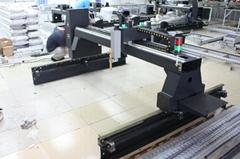 Practical SNR-QL4 gantry type CNC cutting machine